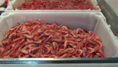 Fresh and boiled shrimps prawns in plastic boxes on fish market, Spain Stock Footage