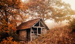 Cabin in woods - stock photo