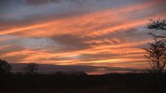 Bushveld sunset time lapse Stock Footage