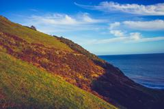Stock Photo of hillside by the coast