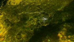 Green waters river surface with whirls Stock Footage