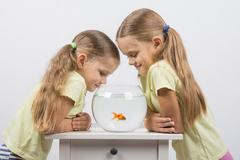 Two little sister gave an aquarium with goldfish - stock photo