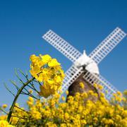 Stock Photo of United Kingdom, England, West Sussex, Halnaker, Halnaker Windmill, Close-up shot