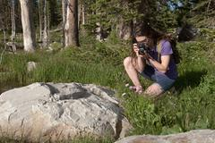 Woman photographing rocks in forest Stock Photos