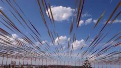 Sydney Sculpture by the Sea exhibition near Bondi Beach - stock footage