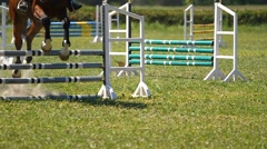 Horse jumping on a hurdle.Slow motion Stock Footage