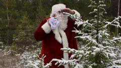 Santa Claus is watching the forest - stock footage