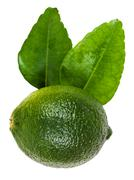 Green kaffir lime with leaves isolated on white Stock Photos