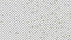 Elegant Golden Confetti Stock Footage