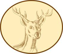Red Stag Deer Head Circle Etching Stock Illustration