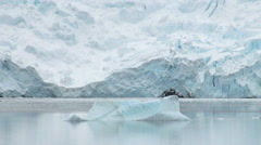 King George Island - Coastline of Antarctica With Ice Formations Stock Footage