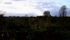 Time lapse at vegetable growing allotment plot in autumn with clouds passing Stock Footage