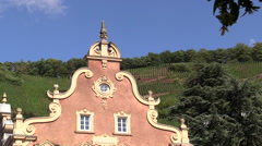 Closeup Monchhof Urzig Germany Mosel River Stock Footage