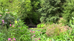 Stream River through trees and flowers Germany Stock Footage