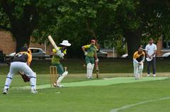 Men play Cricket in Victoria park Auckland, New Zealand - stock photo