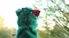 Puppet 3d glasses look around Stock Footage