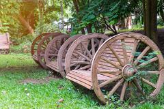 Benches in green grass at park outdoor Stock Photos