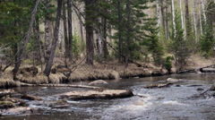 Spring idealistic landscape mountain river at the forest Stock Footage