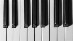 keys of a grand piano - stock photo