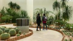 Two girls walk in greenhouse, desert plants exposition, glide shot Stock Footage