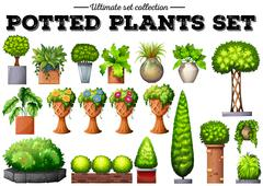 Potted plants in the garden Stock Illustration