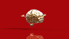 Stock Video Footage of Brain red background