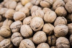 Plenty of walnuts Stock Photos