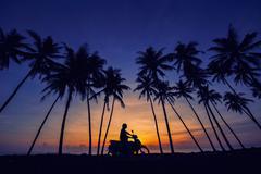 Malaysia, Terengganu, Kuala Terengganu, Motorcyclist riding under palm trees, Stock Photos