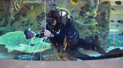 The diver unties the knot and lay packages with food for fish Stock Footage