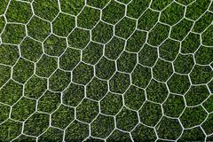 Stock Photo of soccer net on green grass