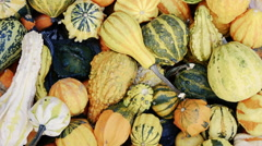 Decorative gourds at market Stock Footage