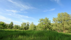Movement of clouds over the meadow. Lubinsky District, Omsk Region, Russia,  Stock Footage