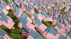 USA American Flags Display Stock Video Stock Footage