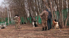 Hunters with their dogs. Stock Footage