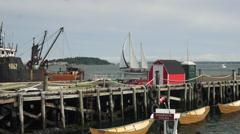 Fishing trawler unloads it's catch as a sailboat passes by in Lunenburg Harbour. Stock Footage