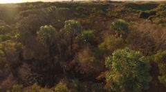 Aerial Shot Moving from the Dunes out to Folly Beach in Charleston, SC Stock Footage