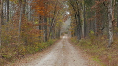Leaves Falling Country Lane Rural Mammoth Cave National Park Kentucky Stock Footage
