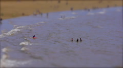 People Playing in the Sea. Tilt Shift Timelapse Stock Footage