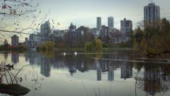 Vancouver's skyline is reflected in lost lagoon as swans float by Stock Footage