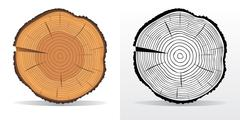 Tree rings and saw cut tree trunk - stock illustration