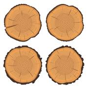 Stock Illustration of Tree rings and saw cut tree trunk