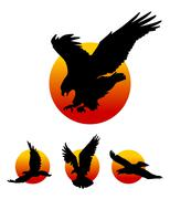 Flying Eagle Silhouettes Piirros