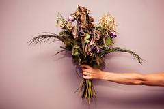 Hand with dead flowers - stock photo
