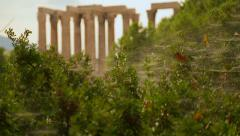 Stock Video Footage of View of ancient Greek temple remains through green bushes with spider web