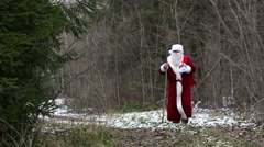 Santa Claus on the road in the woods - stock footage