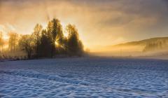 Norway, View of sunburst - stock photo