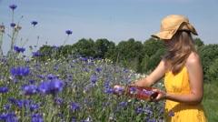 Woman wicker hat reap cornflower blossom in basket in field. 4K Stock Footage
