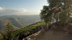 Mountain Tree in São Leonardo de Galafura, Peso de Régua, Portugal Stock Footage