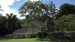 Costa Maya Mexico Kohunlich Mayan Ruins Temple steps 4K Stock Footage