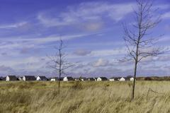 USA, Illinois, Two bare trees in grassy prairie and row of houses on horizon Stock Photos